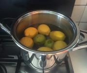 detersivo ecologico lavastoviglie - bollire i limoni
